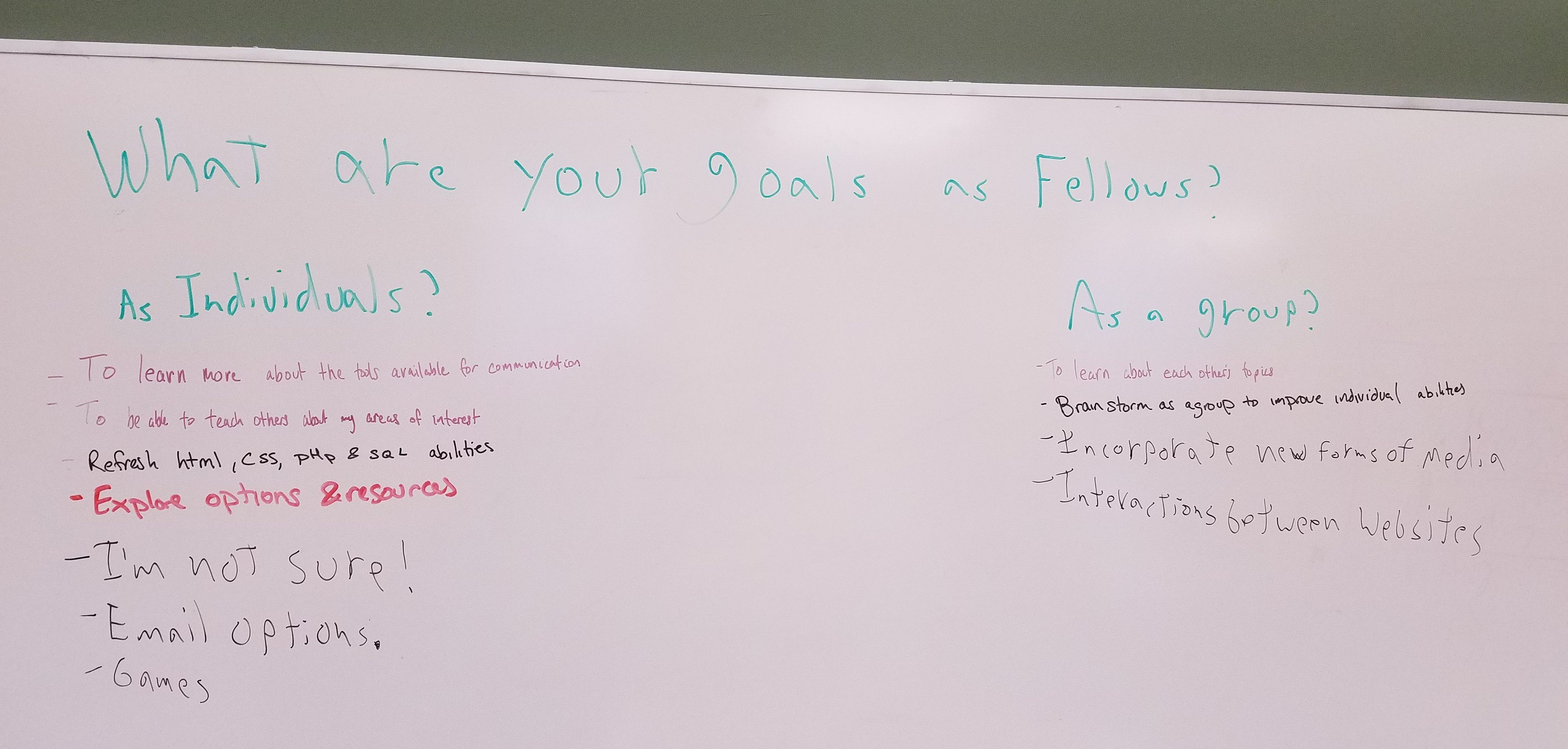 Whiteboard record of Fellows' goals (transcript follows)